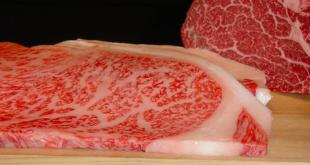 Quanto costa mangiare sushi al ristorante giapponese for Cucinare kobe