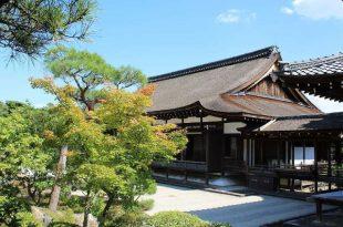 Gestualità giapponese la guida